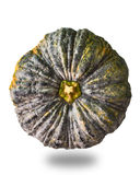 Top view of Pumkin. With mixed green and yellow color royalty free stock image
