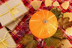 Top view on a pumpkin with dry colorful leaves, gift boxes wrapped of craft paper and yellow ribbons on a red checkered towel. Autumn still life stock photo