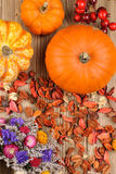 Top view of pumpkins Royalty Free Stock Photography