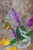 Top view of purple flowers in a vase and leaves on wooden background stock image