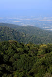 Top view of Rainforest mountain in Chiang Mai, Thailand Stock Image