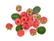 Top view of Raspberries isolated on white background royalty free stock photography