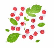 Top view of Raspberries isolated on white background stock photography