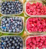Raspberry and blueberries on market. Top view at raspberry and blueberries on market Royalty Free Stock Image