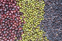 Top view of red beans, green bean and black rice Royalty Free Stock Images