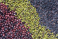 Top view of red beans, green bean and black rice Stock Photos