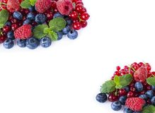 Top view. Red and blue berries. Ripe blueberries, red currants and raspberries on whitebackground. Berries at border of image with. Copy space for text. Various Royalty Free Stock Photos