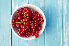 Top view of a red currant Stock Photo