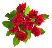 Top view of  red roses bouquet Stock Photo