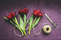 Top view of red tulips and accessories Stock Photography