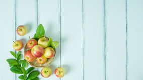 Top view red and yellow apple Royalty Free Stock Photos