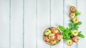 Top view red and yellow apple Royalty Free Stock Image