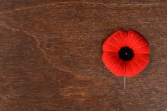 Free Top View Remembrance Day Poppy Stock Images - 148644064
