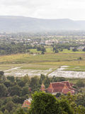 Top view of rice field and temple Royalty Free Stock Image