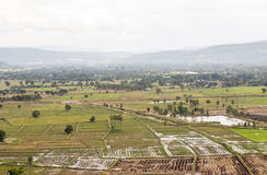 Top view of Rice fields and mountains Stock Photos