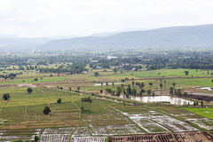 Top view of Rice fields and mountains Stock Photo
