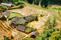 Top view of rice terraces filled with water and village, Vietnam. Top view of rice terraces filled with water and village at highlands of Sapa District, Lao Cai Stock Images
