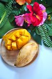 Top view of Ripe Mango on Plate with Tropical Plant on Background. Top view of ripe mango on wooden plate with topical plant on background stock photography