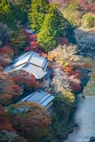 Top view of the river and forest in autumn season at Arashiyama. Kyoto, Japan Royalty Free Stock Photo