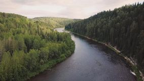 Top view of the river in the mountains surrounded by a green forest. Clip. Top view of the river in the forest.  stock footage