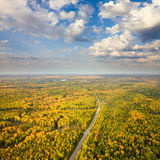 Top view of road in autumn forest Royalty Free Stock Photography
