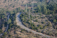 The top view on the road laid through a large forest Stock Images
