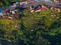 Top view of the road passing through the village and rice fields.  Royalty Free Stock Photos