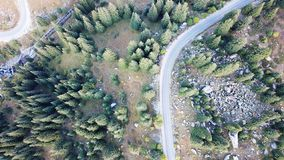 Top view of the road in the woods. Shot on a drone from a height. stock photography