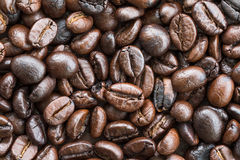 Top view Roasted coffee beans on white Stock Images