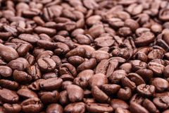 Top view of roaster brown coffee beans, coffee background Stock Image