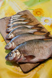 Top view. Row of fresh river fish of different sizes on wooden c Royalty Free Stock Photos