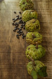 Top View of Row from Unbroken Sugar-apple Fruits Stock Photography