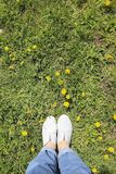 Top view on s foot. Foot in blue sneakers on a background of green glade with yellow dandelions top view Royalty Free Stock Photos