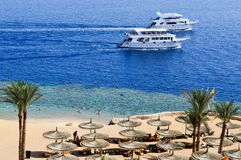 Top view of a sandy beach with sunbeds and sun umbrellas and two large white ships, a boat, a cruise liner floating in the sea on stock photos