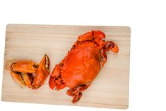 Top view of Scylla serrata. One steamed crab with two big claw separated on wood cutting board. On white background with copy space. Seafood restaurants concept royalty free stock photos