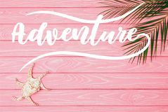 Top view of seashell with palm leaves on pink wooden surface. With adventure lettering stock illustration