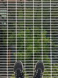 Top view of the selfie of the foot that wears sport shoes on the steel grating floor with green tree background royalty free stock photos