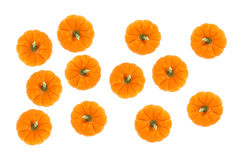 A top view of several small pie pumpkins Royalty Free Stock Photos