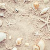 Top view of shells on beach.summer concepts royalty free stock photography