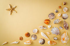 Top view of shells on yellow table. Travel vacation concept. Dreaming about vacation on a tropical beach. Concept decoration tropi Stock Photo