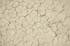 Top view shot of cracked soil Royalty Free Stock Image
