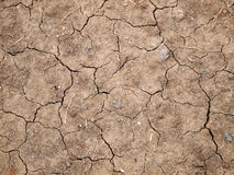 Top view shot of cracked soil. Background Stock Images