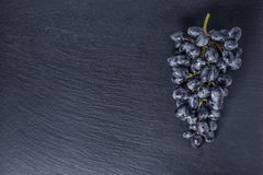 Top view of single branch blue grapes on black slate stone backg Stock Image