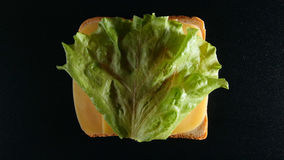 TOP VIEW: Slice of bread with a cheese and green leaf lattuce Stock Image