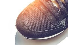 Top view of sneaker on light background Stock Photography