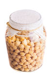 Top View of Soaked Sprouting ChickPeas Royalty Free Stock Photography