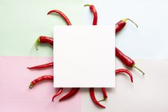 Top view of some red chilli pepper with square frame on top of soft color surface copy space concept f. Top view of some red chilli pepper with square frame on stock photo