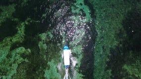 Top view of speed boat in Indian ocean. Aerial stock footage