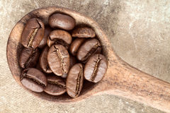 Top view of spoon with coffee beans Royalty Free Stock Photography