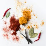 Spoons with paprika and curry Stock Photography